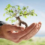 Gestão Ambiental – Tecnólogo