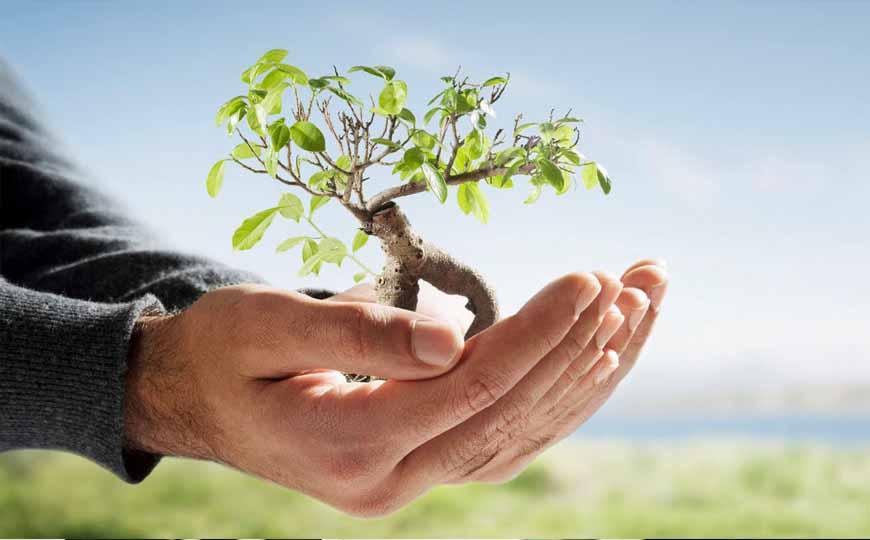 gestao-ambiental-tecnologos