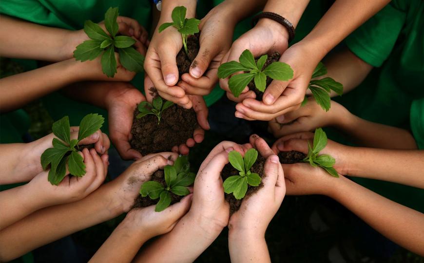 Educação Ambiental – Pós-Graduação 01