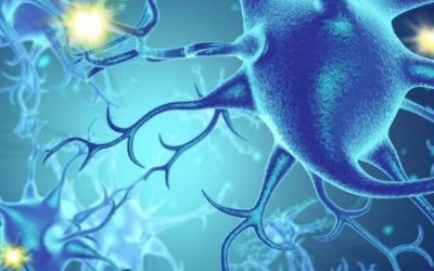Neurociências – Pós-Graduação